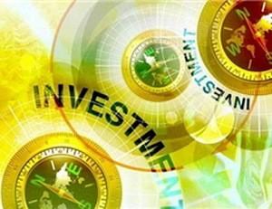 Частные и государственные инвестиции
