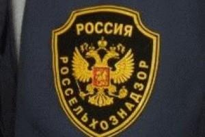 РФ предложила Казахстану пользоваться информационной системой для выявления нарушений на таможне