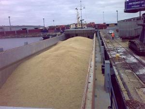 Экспорт российской пшеницы сократился в 2.4 раза