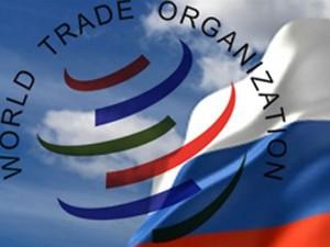 США и ЕС обеспокоены политикой госзакупок Россией в рамках участия ВТО