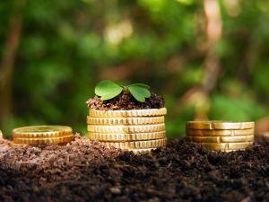 Минсельхоз направил 40% краткосрочным займам в АПК регионов