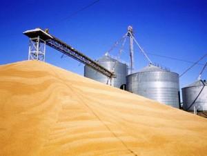 РФПИ может направить инвестиции в зерновой проект Египта