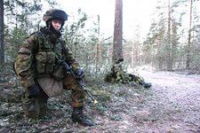 Финляндия готова к усугублению военного кризиса