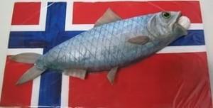 Россельхознадзор проверит производителей рыбной продукции из Норвегии