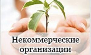 Кабмин выделил свыше 620 млн рублей для предоставления НКО
