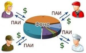 Инвестиции в паевые инвестиционные фонды