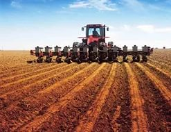 В России будет увеличено количество посевных площадей