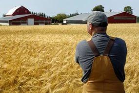 Поддержка сельхозпроизводителей