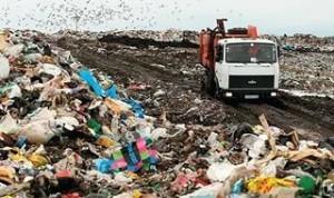 Проблемы захоронения мусора в Подмосковье