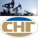 Привилегированные акций Сургутнефтегаза и их особенности