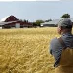 Фермерство – перспективный и многообещающий бизнес для начинающих. Выбираем направление деятельности