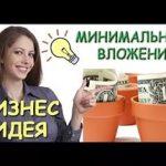 Обзор перспективных бизнес-идей для начинающих предпринимателей с минимальными вложениями