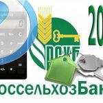 Как рассчитать сумму ипотеки на 2016 год с помощью ипотечного калькулятора Россельхозбанка