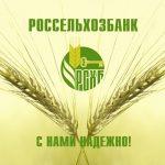 Как взять кредит наличными без поручителей и справок в Россельхозбанке