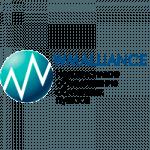Электронный обменник: что это такое? Как сориентироваться на сайте wmalliance.ru? Почему ему можно доверять?