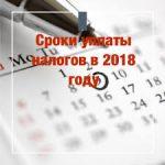 Какие налоги ООО должно платить в 2018 году и их особенности