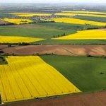 Земельный рынок Украины: реформы и беспорядок?