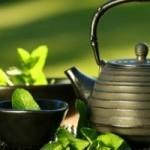 Инвестиции в торговлю чаем