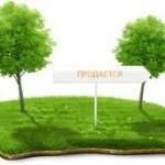 Кредит под залог земельного участка, особенности и правильное офофрмление