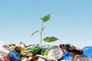 Как открыть бизнес по переработке мусора