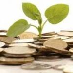 Как найти быстроокупаемый бизнес с минимальными вложениями