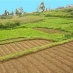 Тонкости земельной ипотеки. Покупаем землю в кредит