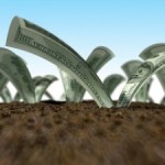Правильные инвестиции: 7 путей вложения средств