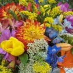 Как открыть цветочный магазин. Бизнес план цветочного магазина