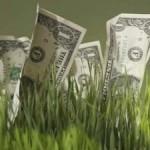 Как правильно вложить деньги
