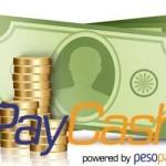 Платёжная система PayCash от А до Я