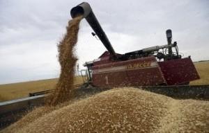 РЖД увеличивают стоимость перевозки зерновых