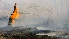 В России резко увеличится количество природных катастроф