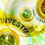 Частные и государственные инвестиции как виды иностранных инвестиций