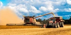 Минсельхоз ожидает урожай зерна в 100 млн тонн