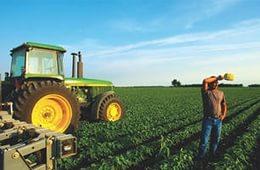 Государство увеличило помощь начинающим фермерами до 1.9 млрд руб.
