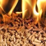 Изготовление пеллет – отличное мини производство для малого бизнеса