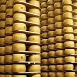 Производство сыра как бизнес для начинающего предпринимателя