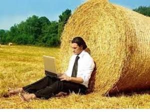 Каким бизнесом можно заниматься в деревне
