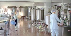 Окупаемость молочных производств превышает 10 лет