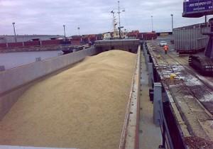 Минсельхоз отмечает падение экспорта пшеницы из России