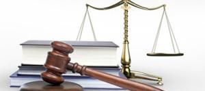 Совет Федерации изучит более 100 законопроектов