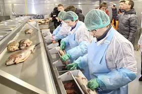 В России могут быть созданы новые рыбные кластеры