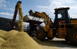 Поставки зерна в Китай