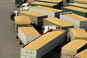 Размер экспортной пошлины на пшеницу