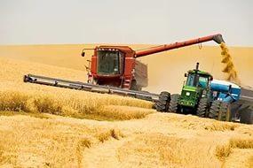 Сельское хозяйство показало 3.5% рост в 2015 году