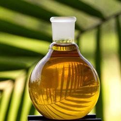 Правительство может ввести дополнительные сборы на пальмовое масло