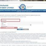 Официальный сайт ЕГРИП налог.ру: какие возможности он открывает?