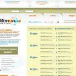 Обзор возможностей menyala.ru или menyala.com и отзывы клиентов