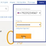 Как бесплатно зарегистрировать Киви кошелек: инструкция и обзор способов